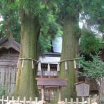 宮崎・高千穂神社の夫婦杉 恋愛成就の待ちうけアップしました!