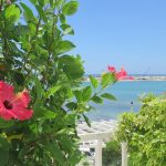 【パワーストーン】沖縄で買うならココ!(1) 結婚900組以上報告の有名店 ブヌヌヌス