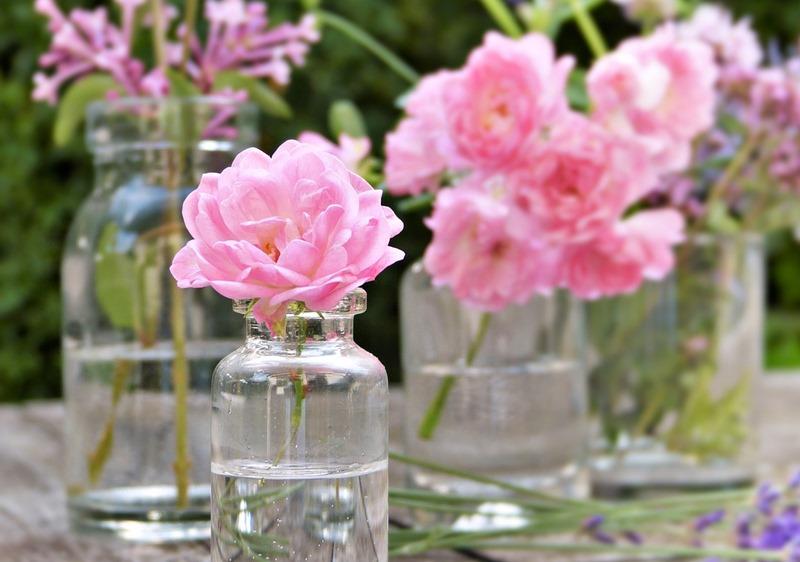 【バラの香りの香水】男性をおもわずフラりとふり向かせる魅惑のローズ系ベスト10のイメージ写真 ピンクのバラ