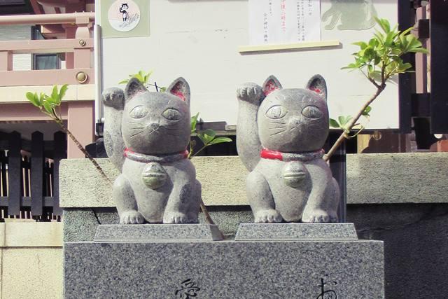 今戸神社 東京 招き猫