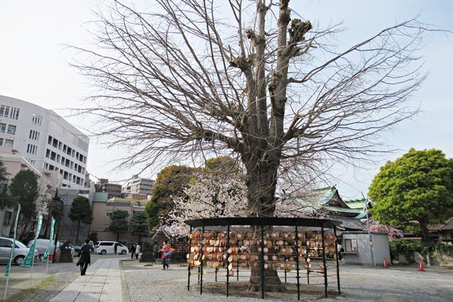 今戸神社 東京 境内